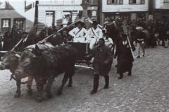 Damals noch Kühe, heute bringen zwei Pferde die beiden Brunnenspringer zum Marktbrunnen.